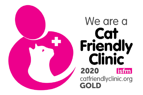 Cat Friendly Clinic 2020